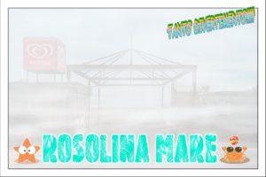 In Polesine la nebbia porta disagi ma anche benefici