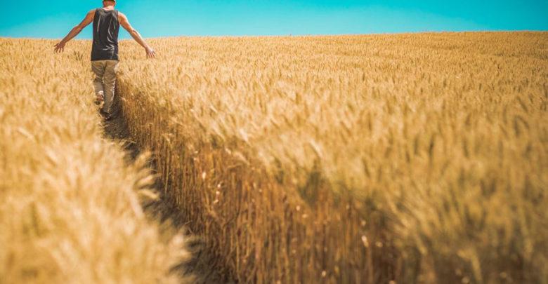 spaccio contadino