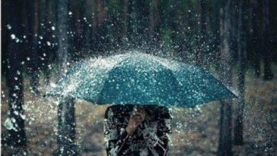 Mardimago pioggia strade allagate